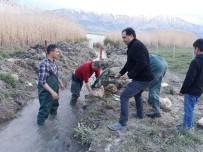 İNCİ KEFALİ - Av Yasağı Döneminde 141 Ton İnci Kefali Ele Geçirildi