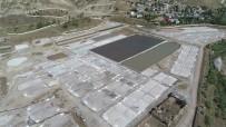 AHMET TURAN - Avrupa'nın tuzu Sivas'tan