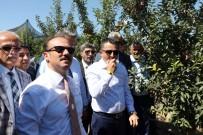 ORMAN BAKANI - Bakan Pakdemirli, Yozgat'ta Meyve Bahçesini Gezdi