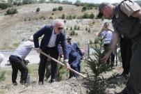 Başkan Saraçoğlu, Fidan Dikip Can Suyu Verdi