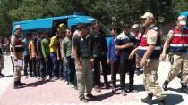 Erzincan'da 33 Kaçak Göçmen Yakalandı