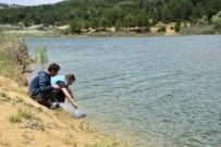 Göletlere 4 Bin Adet Pullu Sazan Balığı Yavrusu Bırakıldı