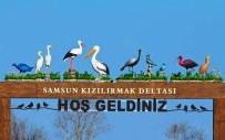 ELEKTRİKLİ BİSİKLET - Kuş Cenneti, Araç Trafiğine Kapatıldı