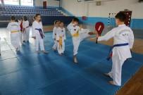 KAZıM KURT - Odunpazarı Belediyesi Tekvando Yaz Okulu'na Çocuklar Yoğun İlgi Gösterdi