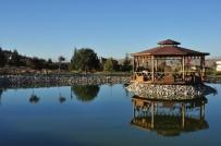 ÇEVRE KIRLILIĞI - Üniversitenin Saklı İncisi Arboretum Park Göleti