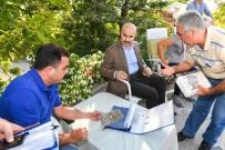 Vali Demirtaş Açıklaması 'Akdeniz Meyve Sineği Sorununu Köklü Şekilde Çözeriz'
