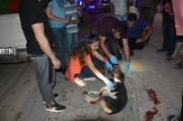 ATATÜRK BULVARI - Vicdansız Sürücü Köpeğe Çarpıp Kaçtı!