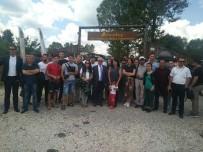 BASIN MENSUPLARI - 13 Yabancı Ülkenin Basın Mensupları Daday'ı Ziyaret Etti