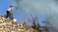 BITEZ - Bodrum'da Çıkan Yangın Otele Sıçramadan Söndürüldü