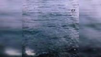 BALIK AVI - Karadeniz'de Çıkan Hortumlar Rus Balıkçılara Zor Anlar Yaşattı
