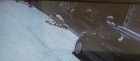 YAVRU KEDİ - Otomobilin Ezdiği Yavrusunun Başından Ayrılmadı