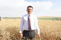 ANKARA VALİSİ - Tarım Bakanı Pakdemirli Açıklaması 'Fiyatlar Üreticimizi Memnun Ediyor'