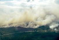 İsveç'te Orman Yangınları Kontrol Altına Alınamıyor