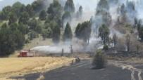 İŞ MAKİNESİ - Konya'da Ormanlık Alana Sıçrayan Yangın