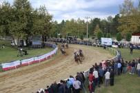 KURTKÖY - Sapanca' Da Mahalli At Yarışları 28 Temmuz'da Gerçekleşecek