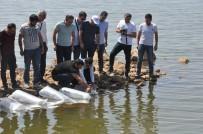 ORMAN BAKANLIĞI - Terörün Yerini Huzura Bırakmasıyla Yaylalar İle Birlikte Nehir Ve Göller De Şenlendi