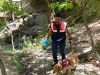 MEHMET TATAR - 6 Yaşındaki Ufuk'u Arama Çalışmaları Sürüyor