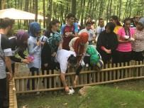DOĞAL YAŞAM PARKI - Cemil Meriç Öğrencileri Ormanya'yı Gezdi