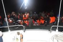 KONGO - Ege'de 43 Kaçak Göçmen Yakalandı