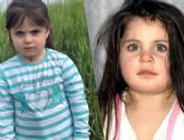 Ağrı'da kaybolan Leyla Aydemir'den acı haber geldi