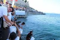 MUAMMER AKSOY - Kuşadası'nda 6 Bin Balık Denize Bırakıldı