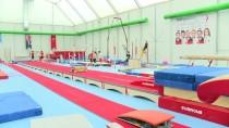 OLIMPIYAT OYUNLARı - 'Şampiyonada Beklentim Daha Fazlaydı'