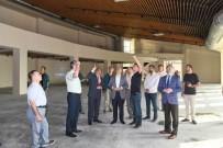 FARKıNDALıK - Çukurova Biyoçeşitlilik Müzesi Eylül'de Açılacak