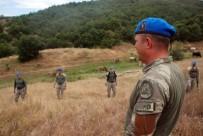 ÖZEL HAREKET - Kayıp Evrim için 'Boralar' devrede