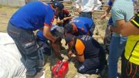 KÖPEK - 7 Metrelik Kuyuya Düşen Yavru Köpek AFAD Tarafından Kurtarıldı