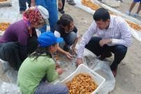 VELİ AĞBABA - Ağbaba'dan Mevsimlik Tarım İşçileri İçin Araştırma Önergesi