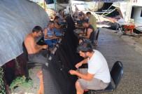 1 EYLÜL - Balıkçılardan Müjde Açıklaması Denizde Bu Yıl Balık Çok