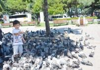 KÖPEK - Dondurma Değil Kuş Yemi İstiyor