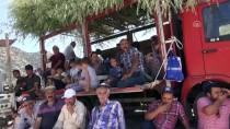 BOĞA GÜREŞİ - Aydın'da 4. Boğa Güreşi Festivali