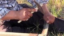 KİMYASAL MADDE - 'Buğdayın Atasını' Geleneksel Yöntemlerle Hasat Ediyorlar