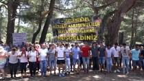EDREMİT KÖRFEZİ - Karadenizliler Kazdağları'nda Bir Araya Geldi