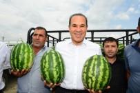 KAZANCı - Karpuz Üreticilerinden Başkan Sözlü'ye Teşekkür