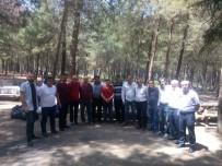 HAFTA SONU - MHP Bayraklı Piknikte Buluştu