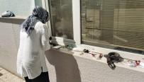 GÖZYAŞı - Samsun'da KPSS'ye Geç Kalanlar Gözyaşı Döküp İsyan Etti