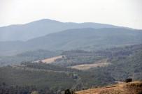 Dağda Kaybolan Gençlerin İmdadına AFAD Yetişti