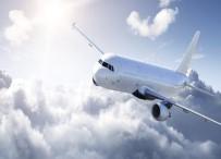 TIFLIS - Kuş Sürüsüne Çarpan Uçak Acil İniş Yaptı