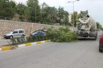 Çankırı'da Fırtına Ağaçları Kökünden Söktü