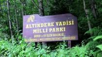 SÜMELA MANASTIRI - Sümela'nın 'Aya Varvara'sına Turist İlgisi