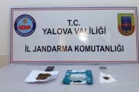 JANDARMA ALAY KOMUTANLIĞI - Yalova'da Uyuşturucu Operasyonu Açıklaması 13 Gözaltı