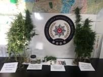 Yalova Ve İstanbul'da Eş Zamanlı Uyuşturucu Operasyonu
