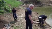 İTFAİYECİLER - Gölette İnek Kurtarma Operasyonu