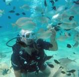 GEZİ TEKNESİ - Turistlerin Yeni Gözdesi Su Altında Ekmekle Balık Beslemek