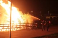 MOGAN GÖLÜ - Ankara'da Korkutan Yangın