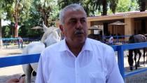 ATATÜRK EVİ - Dörtyol'daki Atatürk Evi Restore Edilecek