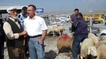 PAZAR ESNAFI - Hayvan Pazarında 'Kurban' Hareketliliği