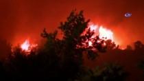 KALIFORNIYA - Kaliforniya'daki Yangında 1 Kişi Hayatını Kaybetti